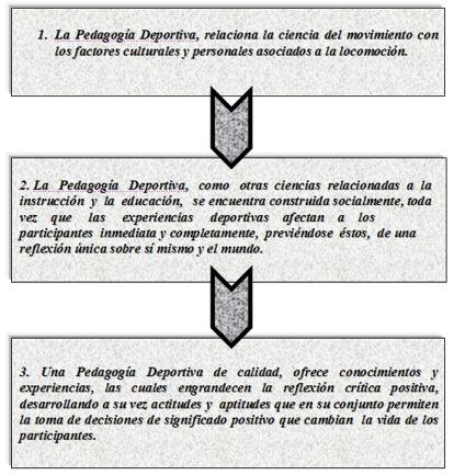 Proceso Pedagógico
