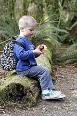 Importancia de la nutrición en el niño y joven deportista