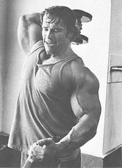 Trabajando Tríceps. ¿Codos pegados al tronco o no?